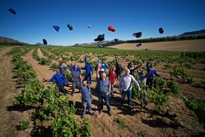 Piekenierskloof Wine Company