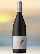 2014 Dabar Shiraz Rotwein aus Südafrika
